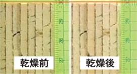 乾燥実験後のJWOOD JVLの収縮 乾燥前と乾燥後