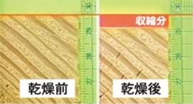 乾燥実験後の無垢製材品の収縮(ベイマツ) 乾燥前と乾燥後