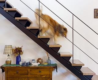セカンドハウス 千葉県S様邸 リビング階段